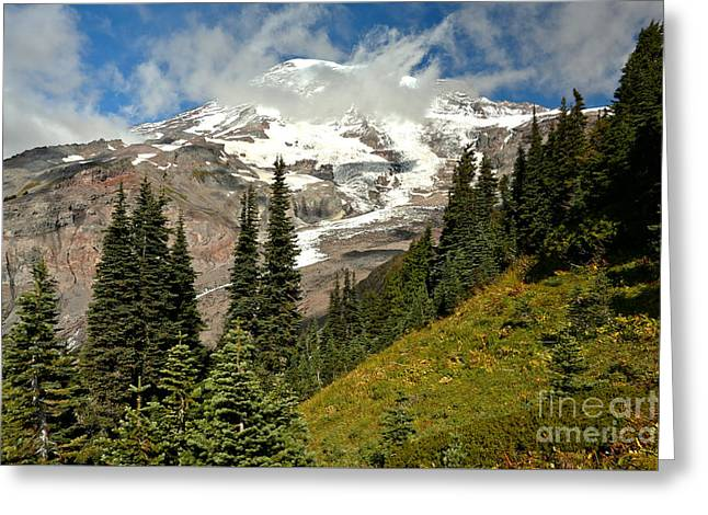 Looking Above The Treeline Greeting Card by Adam Jewell
