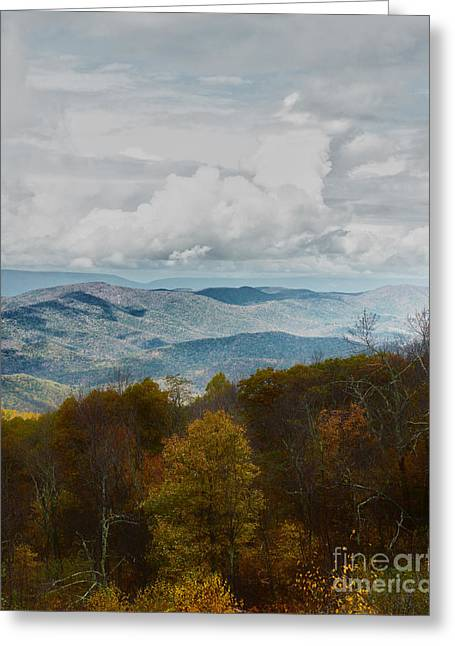Scenic Drive Greeting Cards - Looking Across The Valley Greeting Card by Tom Gari Gallery-Three-Photography