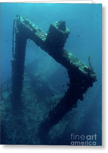 Misfortune Greeting Cards - Looking down at a shipwreck near Faadhippolhu Atoll Greeting Card by Sami Sarkis