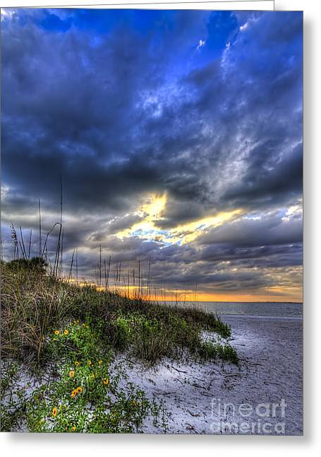 Storm Light Greeting Cards - Looking For You Greeting Card by Marvin Spates