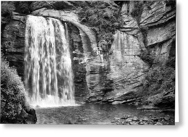 Fall Trees Greeting Cards - Looking Glass Falls Greeting Card by Howard Salmon