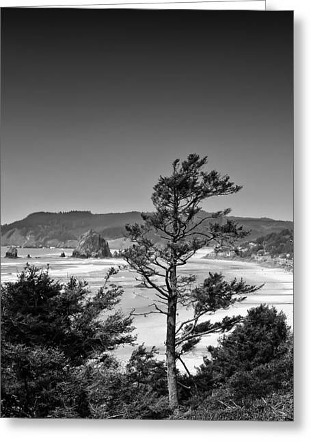 Hdr Look Greeting Cards - Looking North to Cannon Beach Greeting Card by David Patterson