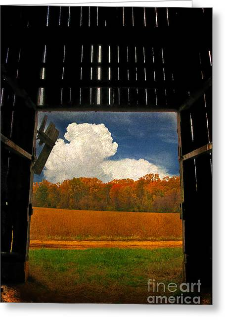 Barn Digital Greeting Cards - Looking Out Greeting Card by Lois Bryan