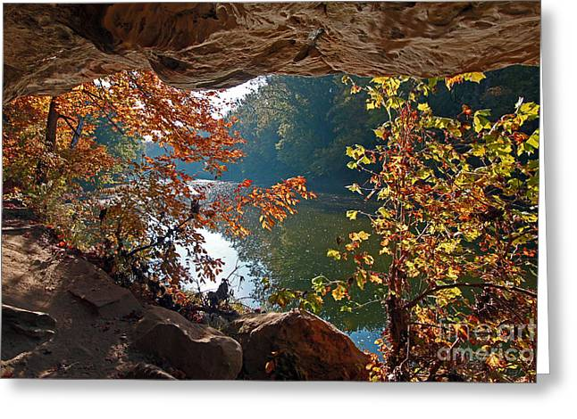 Turkey Run State Park Greeting Cards - Looking out Greeting Card by Steve  Gass