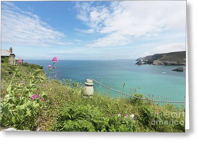 Looking Out To Sea Greeting Card by Terri Waters