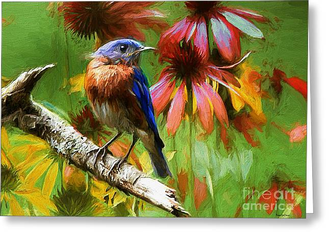 Print Photographs Greeting Cards - Looking To Yonder Greeting Card by Tina  LeCour