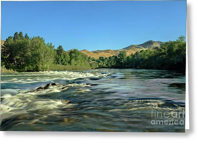 Looking Up The Payette Greeting Card by Robert Bales