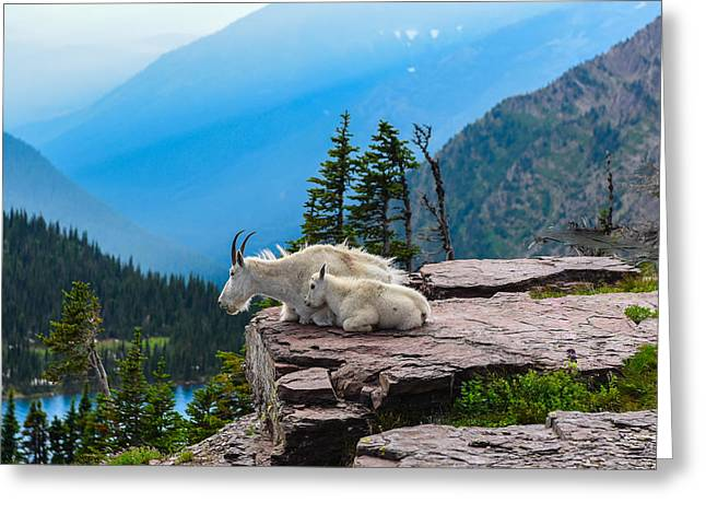 Glacier Greeting Cards - Lookout Ledge Greeting Card by Joseph Rossbach