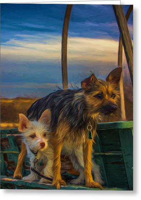 Puppies Photographs Greeting Cards - Lookout Pups Greeting Card by Lisa Fitzthum