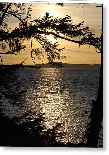Deception Beach Greeting Cards - Lopez Island Sunset Greeting Card by Gene Ritchhart