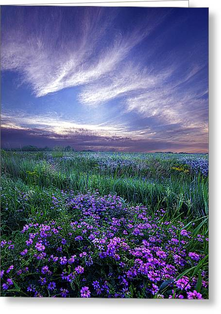 Lord Don't Go Greeting Card by Phil Koch