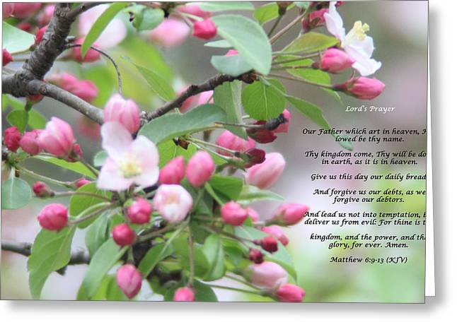 Lords Prayer Greeting Card by Cliff Ball