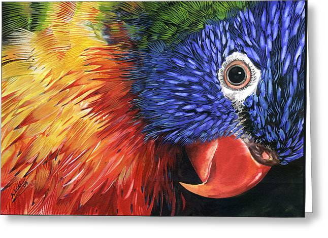 Best Sellers -  - Nadi Spencer Greeting Cards - Lorikeet Greeting Card by Nadi Spencer
