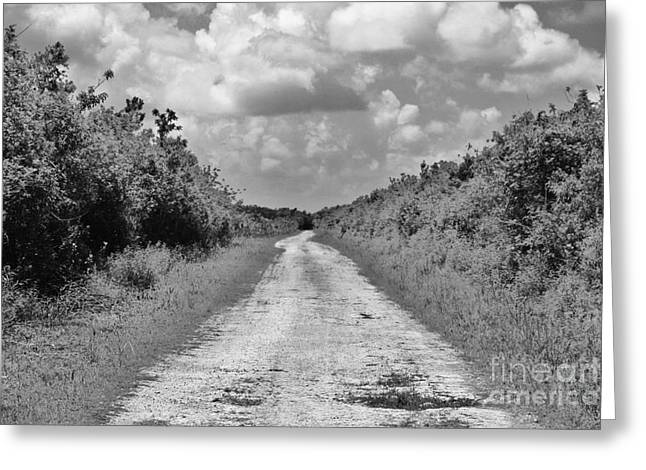 Long Street Greeting Cards - Lost Highway Greeting Card by Chuck  Hicks
