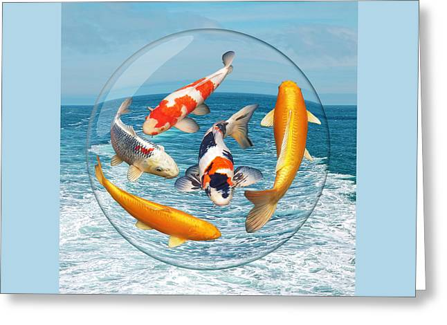 Lost In A Daydream - Fish Out Of Water Greeting Card by Gill Billington