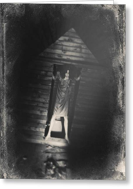 Intrigue Greeting Cards - Lost Inside Greeting Card by Lacey Grainger