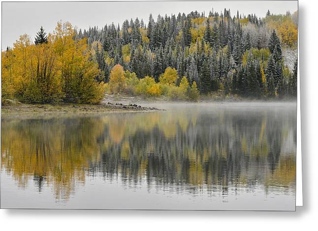 Mountain Road Greeting Cards - Lost Lake Snowy Aspens Greeting Card by Dean Hueber