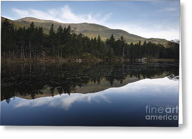 Lost Pond - White Mountains New Hampshire Usa Greeting Card by Erin Paul Donovan