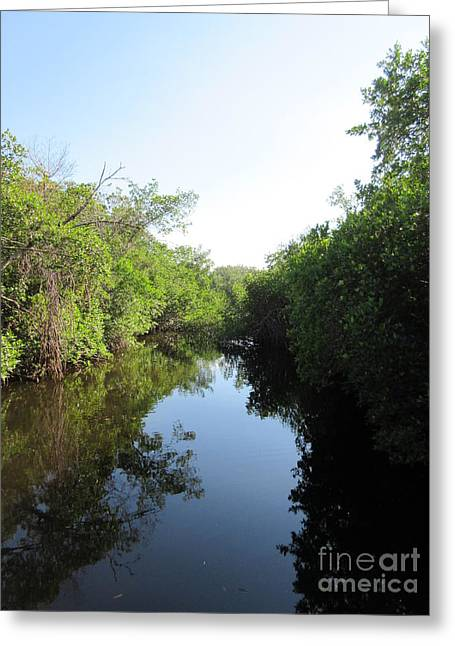 Charlotte Greeting Cards - Lost Waterway Greeting Card by Frederick Holiday