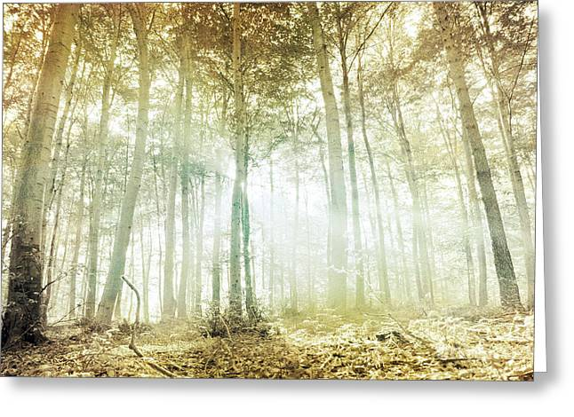 Forest Greeting Cards - Lothlorien Greeting Card by Violet Gray