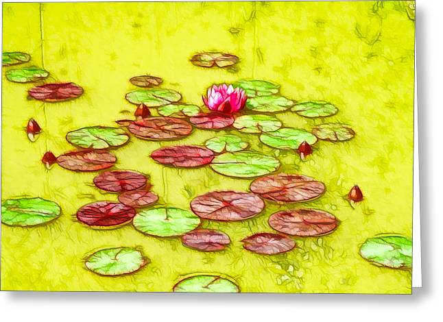 Lotus Flower On The Water 2 Greeting Card by Lanjee Chee