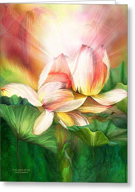 Lotus Blossoms Greeting Cards - Lotus - Spirit Of Life Greeting Card by Carol Cavalaris
