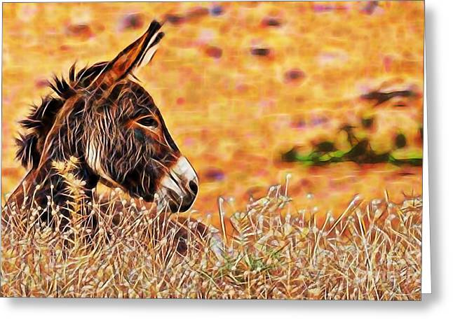 Donkey Greeting Cards - Lounging Greeting Card by Marvin Blaine