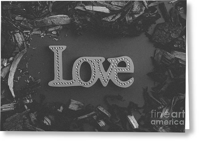 Concept Photographs Greeting Cards - Love 3 Greeting Card by Maria Bobrova