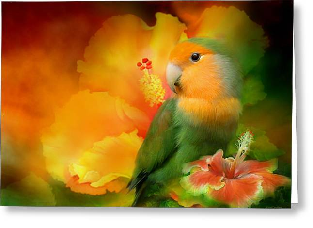 Love Bird Greeting Cards - Love Among The Hibiscus Greeting Card by Carol Cavalaris