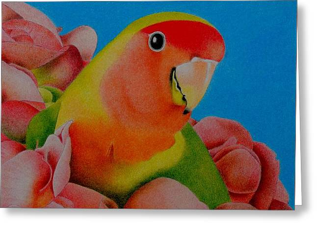 Love Bird Greeting Card by Sharon Patterson
