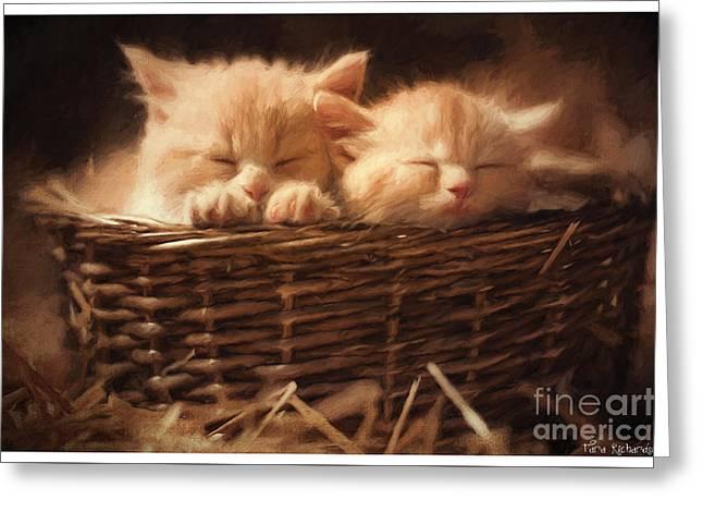 Kitten Greeting Cards - Love Bugs Greeting Card by Tara Lee Richardson