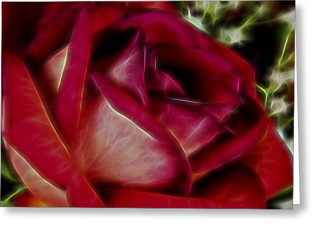 Love Of Mine II Greeting Card by Jon Glaser