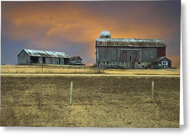 Outbuildings Greeting Cards - Love Those Old Barns Greeting Card by Judy  Johnson