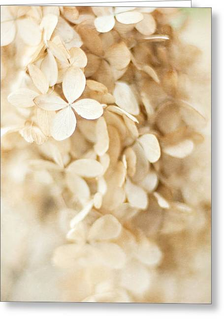 Dried Hydrangeas Greeting Cards - Love Will Change Your Mind  Greeting Card by Lisa Russo