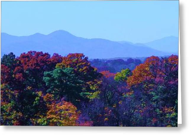 Michelle Obama Digital Art Greeting Cards - Lovely Asheville Fall Mountains Greeting Card by Ray Mapp