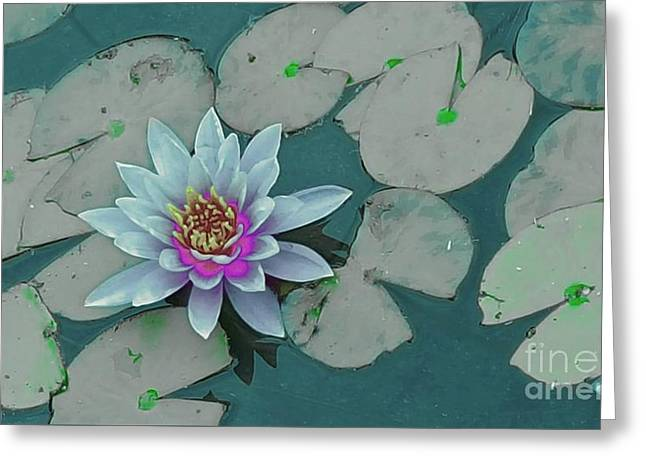 Bloosom Greeting Cards - Lovely Water Lily  Greeting Card by Jasna Gopic