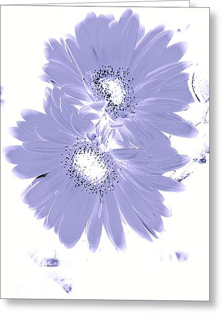 On The Beach Greeting Cards - Loving on the Lavender Greeting Card by Heather Joyce Morrill