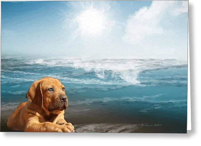Puppy Digital Art Greeting Cards - Loving The Ocean Greeting Card by EricaMaxine  Price