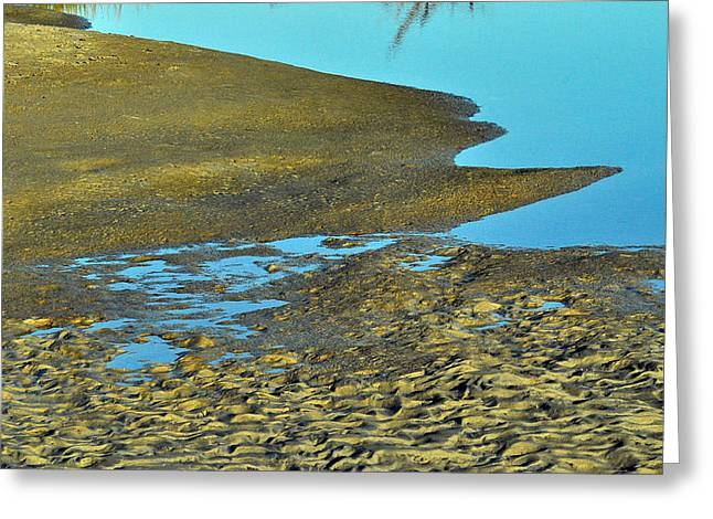 Jacksonville Greeting Cards - Low Tide At Little Talbot Greeting Card by William Jones