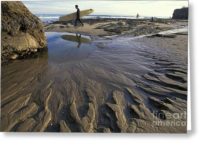 Santa Cruz Surfing Greeting Cards - Low Tide at the Lane Greeting Card by Stan and Anne Foster
