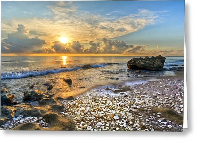 Hobe Sound Greeting Cards - Low Tide Greeting Card by Debra and Dave Vanderlaan