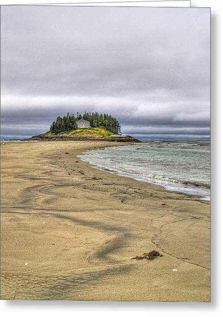 Low Tide In Popham Beach Maine Greeting Card by Tammy Wetzel