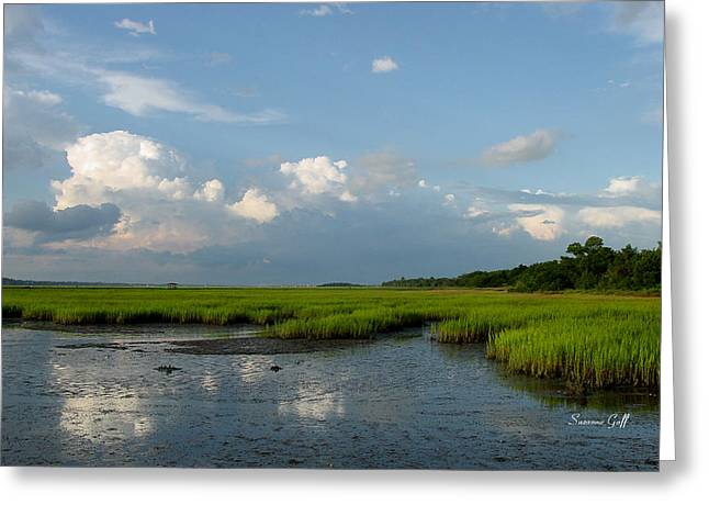 Low Tide Greeting Card by Suzanne Gaff