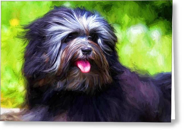 Best Friend Greeting Cards - Lowchen Greeting Card by Peter Hogg