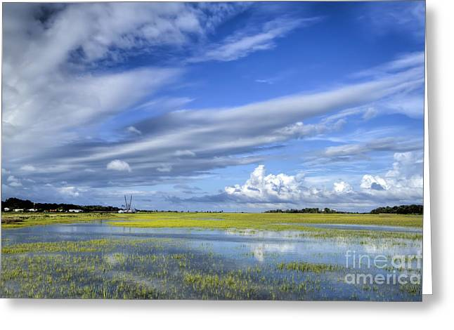 Lowcountry Flood Tide II Greeting Card by Dustin K Ryan