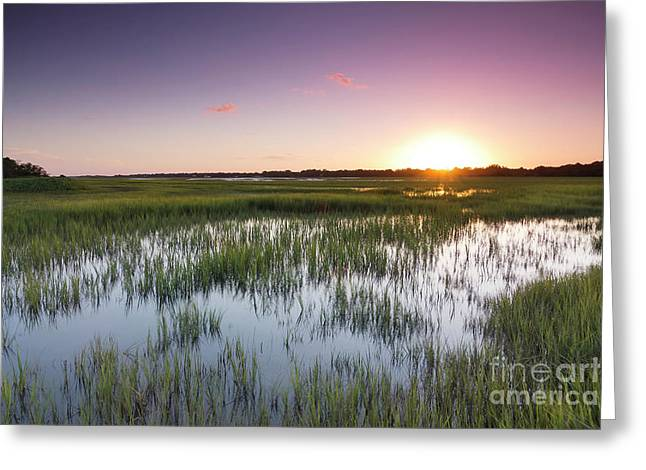 Lowcountry Flood Tide Sunset Greeting Card by Dustin K Ryan
