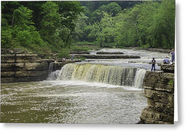 Lower Cataract Falls Greeting Card by Phyllis Taylor