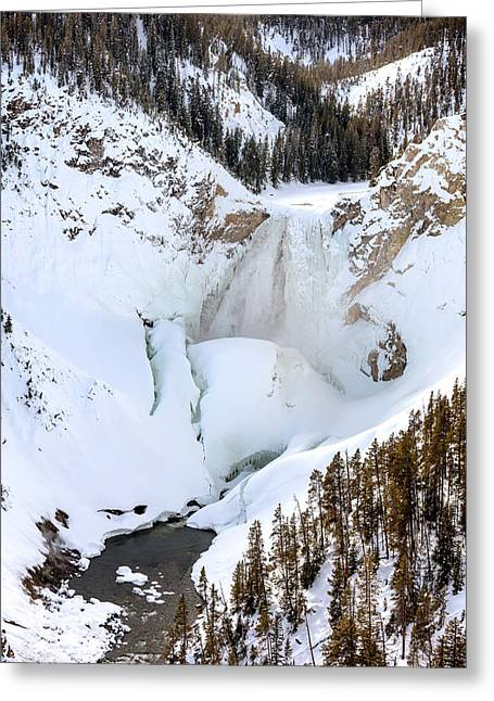 Lower Falls In The Grand Canyon Of The Yellowstone River Greeting Card by Carol M Highsmith