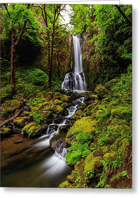 Recently Sold -  - Moss Greeting Cards - Lower Kentucky Falls Greeting Card by Sandy  Wilson