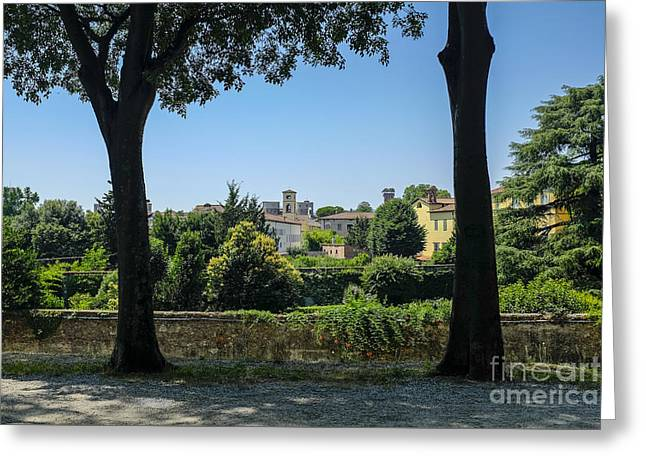 Old Tower Greeting Cards - Lucca Italy Greeting Card by Edward Fielding